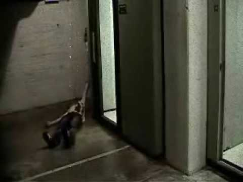 Watch Sorority Slaughterhouse (2015) Online Free Putlocker