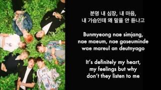 BTS (방탄소년단) – I Need U Lyrics [Han/Rom/Eng Sub]