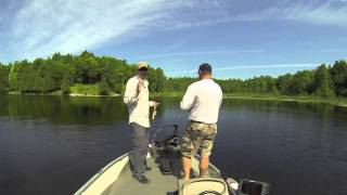 Pitching Jigs for Weed-Living Crappie