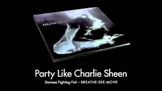 Siamese Fighting Fish - Party like Charlie Sheen