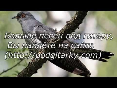песня кукушка минусовка и текст медведев алексей