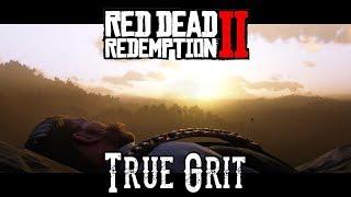 Red Dead Redemption 2 - True Grit
