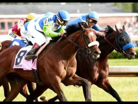 Barbaro - Live Like Horses - Kentucky Derby 132 Champion