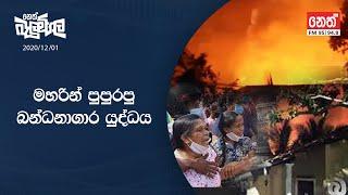 Neth Fm Balumgala |  2020-12-01