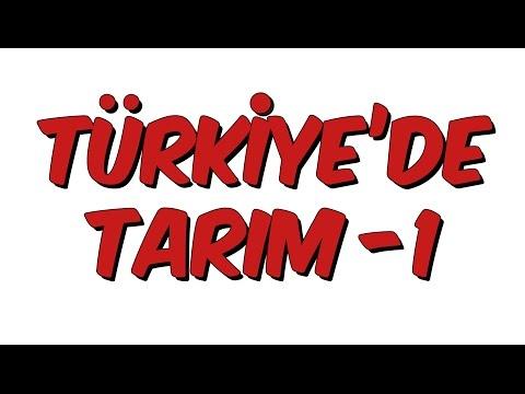 10dk da TÜRKİYE'DE TARIM 1- Tonguc Akademi, Talha DOGAN