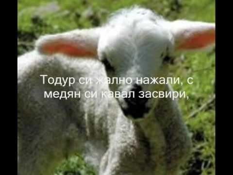 ЗАБЛЕЯЛО МИ Е АГЪНЦЕ Борис Машалов