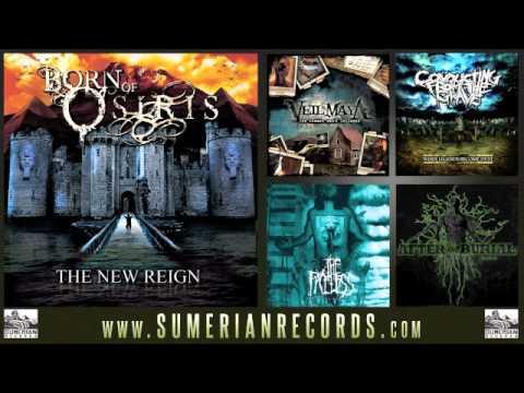 Born Of Osiris - Brace Legs