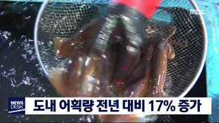 도내 어획량 전년 대비 17% 증가