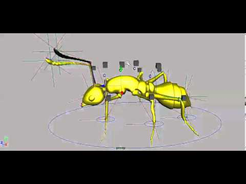 Testing the rigging of ant model made in Maya.