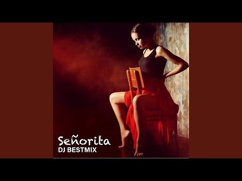Download Lagu  Señorita Ringtone Version Mp3 Free