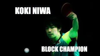 Koki Niwa - Block Champion