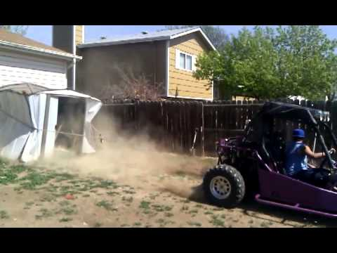 Joyner sand spider kills shed