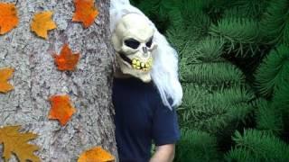 A Frightful Encounter: Forest Preserve