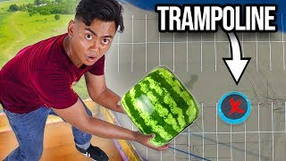 Dropping Watermelons vs Trampoline From 500cm ~  Bounce
