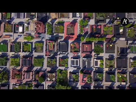 Кладбища Киева: видео с высоты птичьего полета