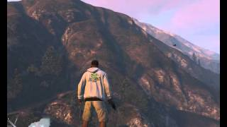Test GTA 5 with R9 380 and FX6300 High Settings