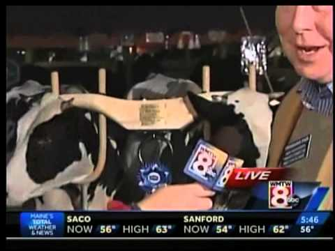 Channel 8 News - Fryeburg Fair