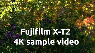 FUJIFILM X-T2 4K SAMPLE FOOTAGE UHD FORMAT USING VARIOUS FUJINON LENSES