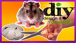 Игрушка для хомяка своими руками / Toy for hamster with your hands