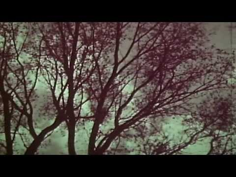 Nieves - Winter