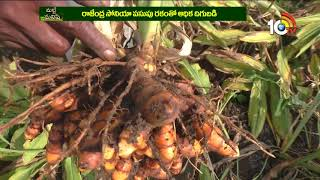 Khammam Turmeric Farmer gets High Yield by Rajendra Sonia Variety | Matti Manishi  News