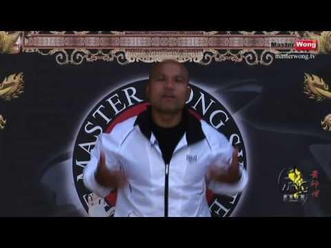 Wing Chun Training - Lesson 1 Punch Drill Image 1