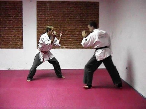 Tecnicas de Defensa Personal Yawara Jitsu
