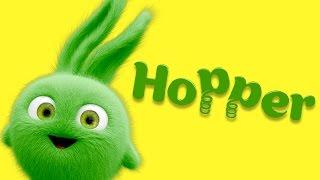 Cartoon | Sunny Bunnies - Meet the Bunnies - Hopper! 💚 Videos For Kids