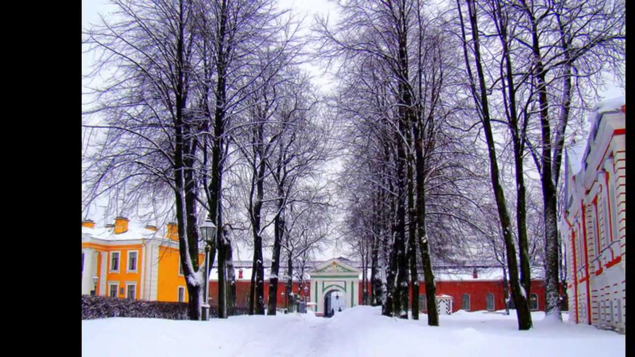 Рецепт маринованных маслят на зиму с фото