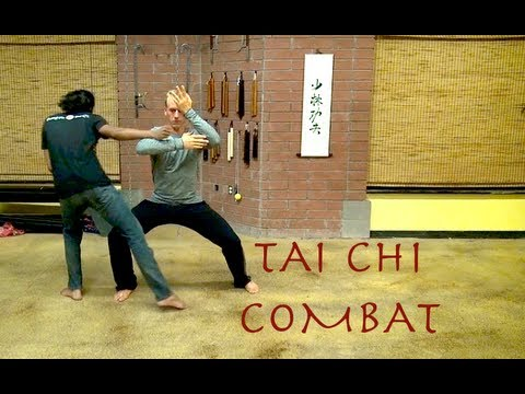 Top 10 TAI CHI Combat Fighting Moves - Tai Ji Quan Combat
