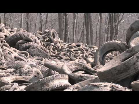 The Garner/Brandywine scrap tire site is a legacy tire dump located in rural Prince George's County. It was the largest know tire dump in the state of Maryla...