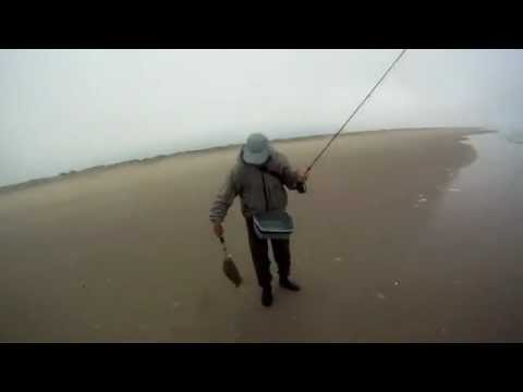 Magdalena Bay Fly Fishing, Halibut Double Header