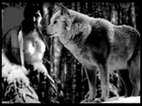 Wolf-1 zferi50