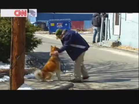 Hachiko A Dog's Story Behind The Scenes video