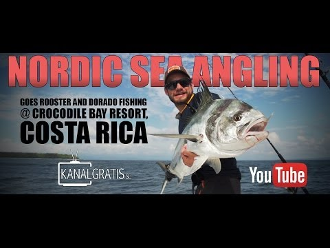 Nordic Sea Angling goes Rooster and Dorado Fishing @ Crocodile Bay Resort, Costa Rica
