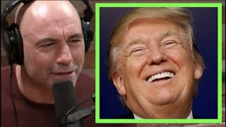 Joe Rogan - Why Donald Trump is Untouchable