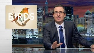 Birds Last Week Tonight with John Oliver Web Exclusive