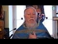 Протоиерей Димитрий Смирнов Проповедь о служении Господу без ропота и с радостью mp3