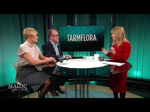 Kvinnors förmåga att bli gravida påverkas av tarmfloran - så hänger det ihop - Malou Efter tio (TV4)