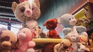 Niagara Toy Store