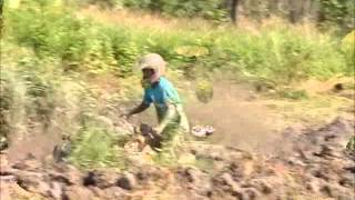 Black River Mud Bog July 29, 2012 - Part 2