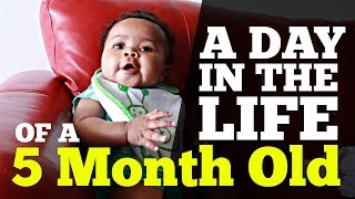 A Day in the Life of a 5 Month Old