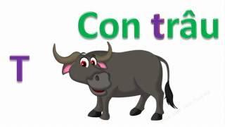 Dạy bé học thuộc bảng chữ cái tiếng việt qua động vật | Bé thần đồng