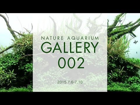 [ADAview] NATURE AQUARIUM GALLERY(EN) 2015.7.6-7.10