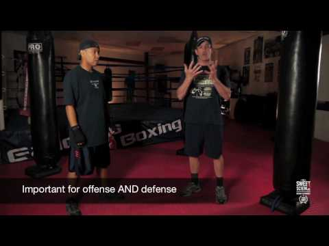 Double Jab - The Sweet Science: Boxing Techniques by Javier Diez Image 1
