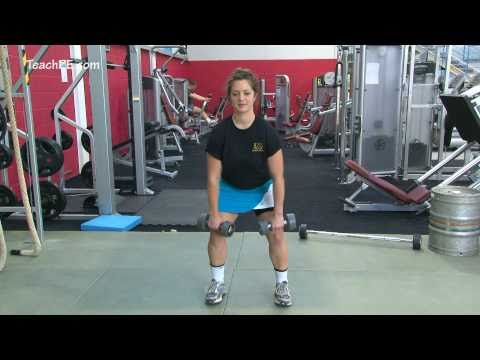 Weight Training Fitness Workouts - Bent Over Dumbbell Row Image 1