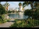 New Four Preps: 20 Years ago, MacArthur park