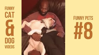 Funny Cats and Dogs Compilations 8 | Vines 2018
