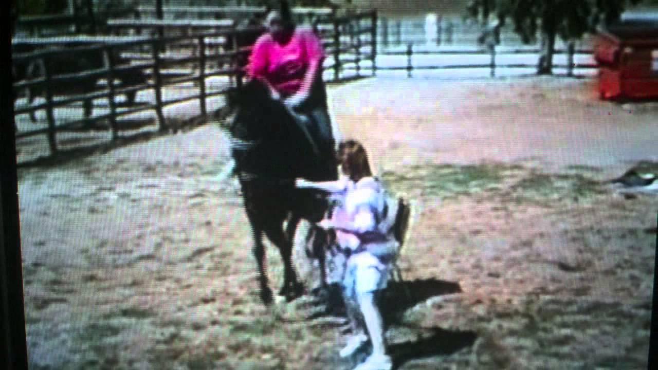 Fat lady falls off horse - YouTube