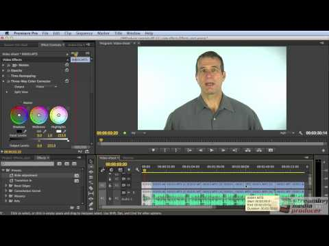 Tutorial: Applying Effects and Adjustments to Multiple Clips in Adobe Premiere Pro CC